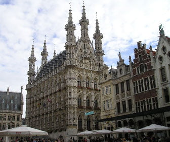 Excursion a Lovaina desde bruselas