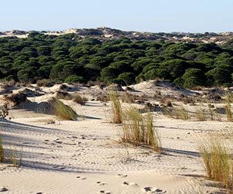 Ruta por Huelva en 3 dias